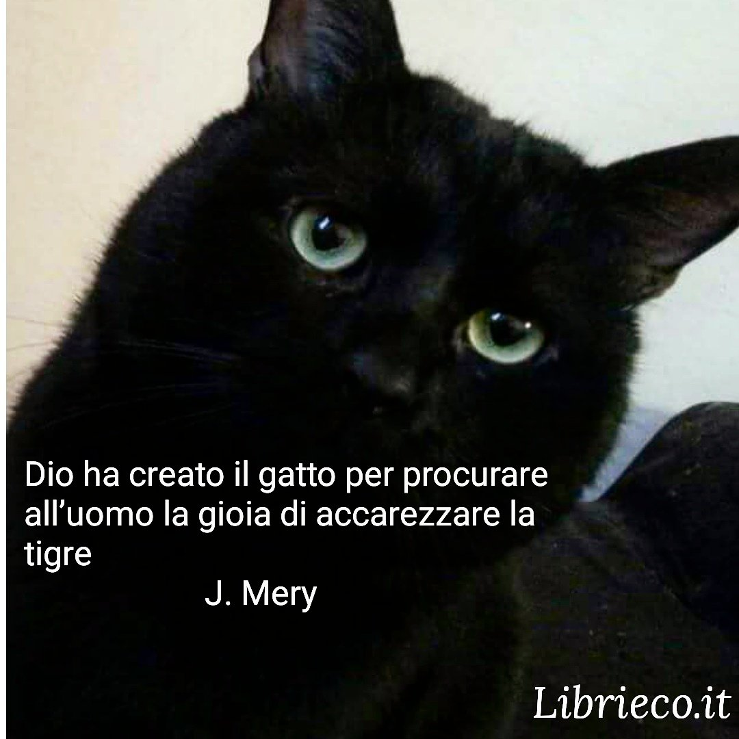 J. Mery
